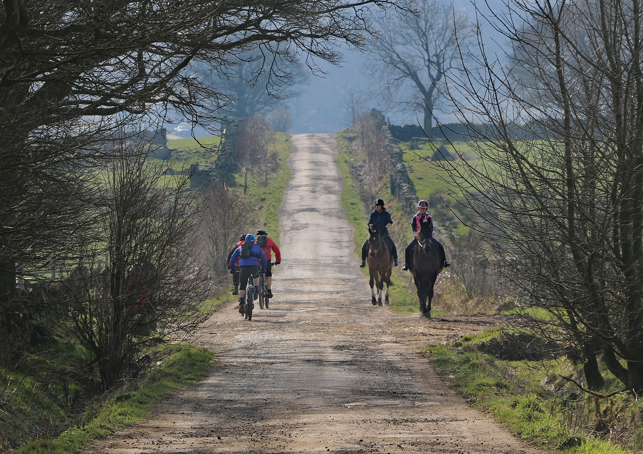 Who Is Faster – a Horse Rider or a Cyclist?